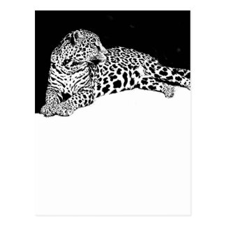 Leopardo Tarjetas Postales