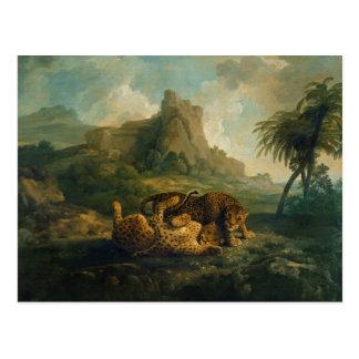 Leopardos en el juego, c.1763-8 tarjeta postal