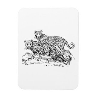 Leopardos Imán Rectangular