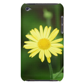 Leopards Bane Flowers  iTouch Case iPod Touch Case