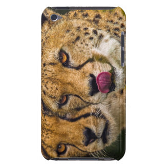 Leopards IPod Touch Barely There Barely There iPod Cover