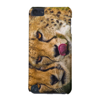 Leopards iPod Touch Case