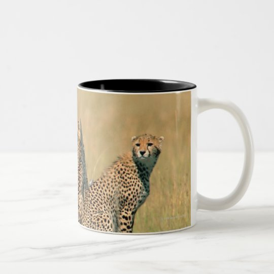 Leopards looking away Two-Tone coffee mug