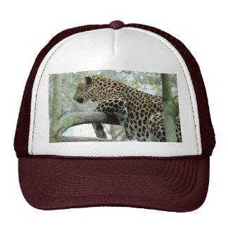 LeopardSundari_003 Trucker Hat
