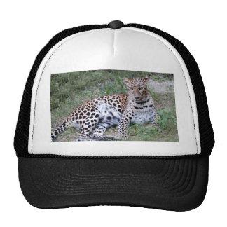 LeopardSundari_009 Trucker Hat