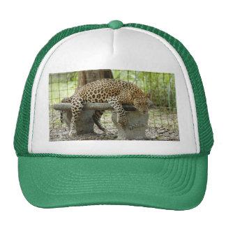 LeopardSundari_011 Trucker Hat