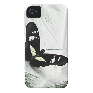 lepidopterist,butterfly,black,white,caladium,leaf, iPhone 4 cover