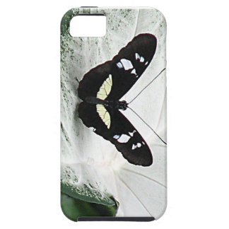 lepidopterist,butterfly,black,white,caladium,leaf, iPhone SE/5/5s case