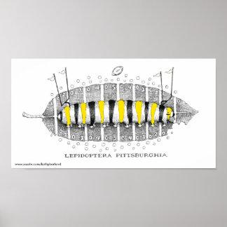 Lepidópteros Pittsburghia-Zazzle, www.zazzle.com… Póster