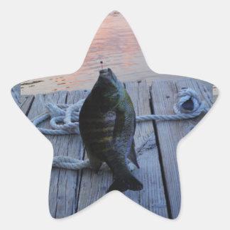 Lepomis macrochirus en la punta de flecha del lago pegatina en forma de estrella