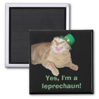 Leprechaun Cat Magnet