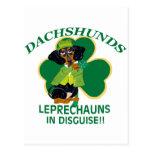 LEPRECHAUN DEL DACHSHUND POSTAL