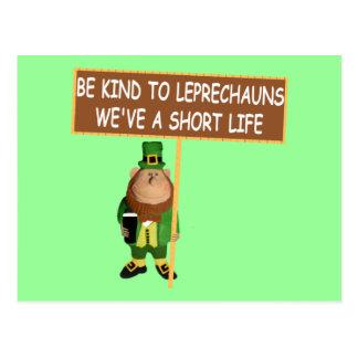 Leprechaun divertido postales