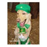 Leprechaun Sighting! Postcard