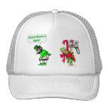 Leprechaun's Rule Hats