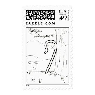 Leptospira Interrogans stamp