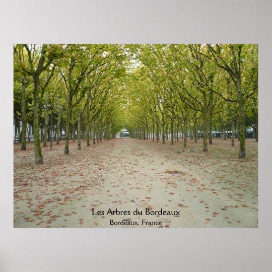 Les Arbres du Bordeaux Poster