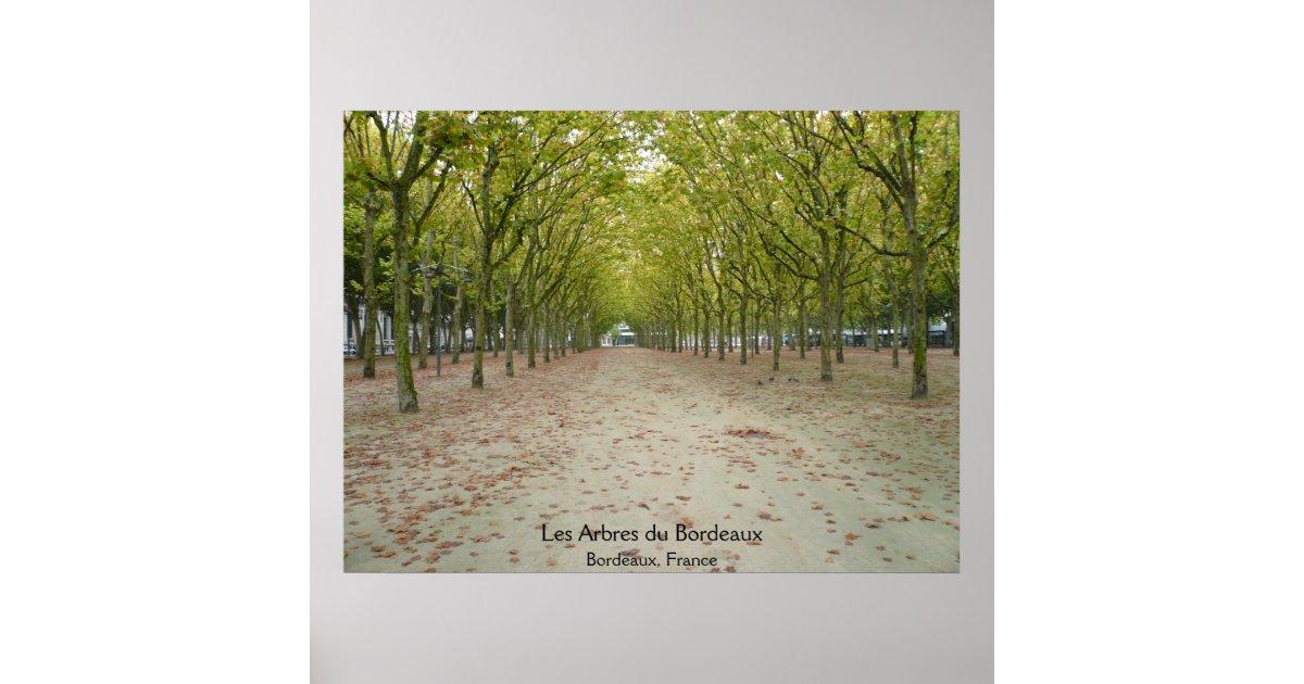 Encadrement poster bordeaux id e inspirante for Miroir orangerie