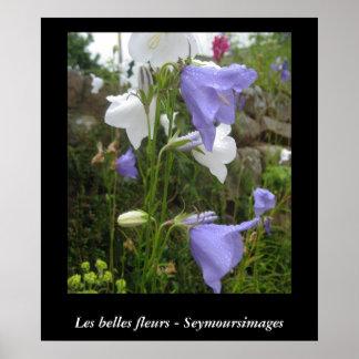 Les Belles Fleurs Poster