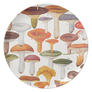 Les Champignons Mushrooms Dinner Plate