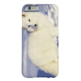 Les Etats-Unis Alaska Renard arctique dans le ma iPhone 6 Case
