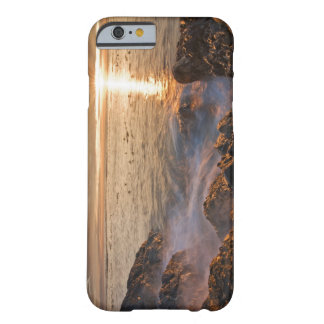 Les Etats-Unis, Washington, îles de San Juan.  Un Barely There iPhone 6 Case