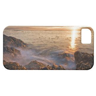 Les Etats-Unis, Washington, îles de San Juan.  Un iPhone 5 Covers