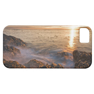 Les Etats-Unis, Washington, îles de San Juan.  Un iPhone SE/5/5s Case