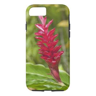 Les Fidji, île de Viti Levu. Fleur iPhone 7 Case