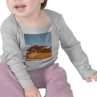 Les Ocres du Roussillon Tshirt