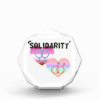 Lesbian Gay Solidarity Award