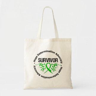 Lesión cerebral traumática del superviviente bolsa