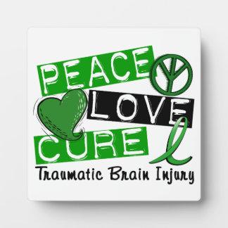 Lesión cerebral traumática TBI de la curación del  Placas Con Fotos