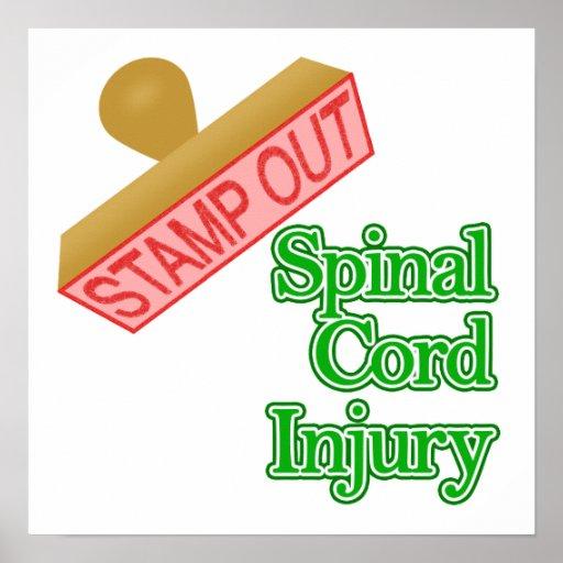 Lesión de la médula espinal poster