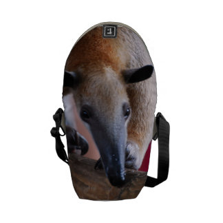 Lesser Anteater Messenger Bag