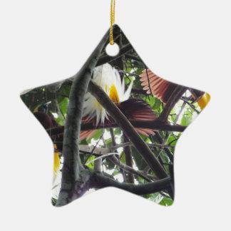 Lesser Birds of Paradise from Tropical Rainforest Ceramic Ornament
