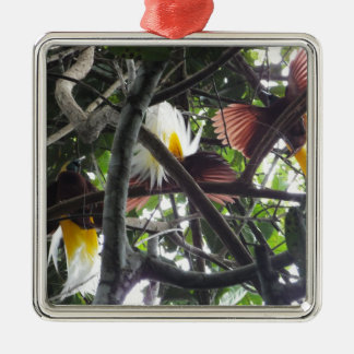 Lesser Birds of Paradise from Tropical Rainforest Metal Ornament