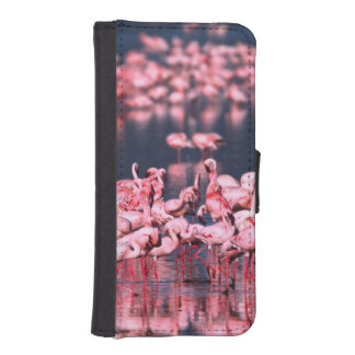 Lesser Flamingos (Phoeniconaias minor), Africa, Phone Wallet