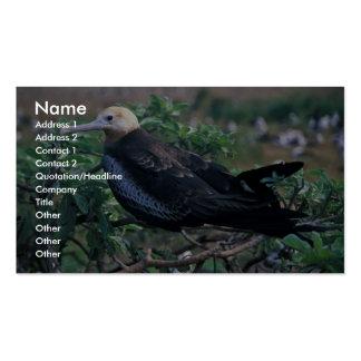 Lesser frigatebird perching on branch business card template