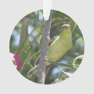 Lesser Goldfinch Ornament