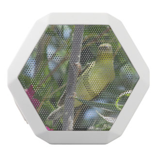 Lesser Goldfinch White Bluetooth Speaker