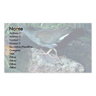 Lesser Moorhen Business Card Template