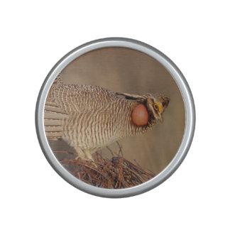 Lesser Prairie Chicken lek Milnesand, New Mexico Bluetooth Speaker