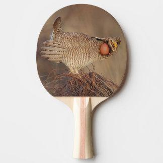 Lesser Prairie Chicken lek Milnesand, New Mexico Ping Pong Paddle