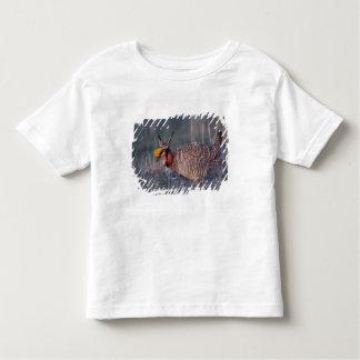Lesser Prairie-Chicken, Tympanuchus T Shirt
