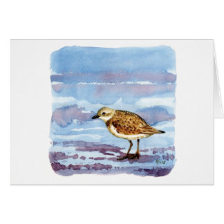 Lesser sand plover card
