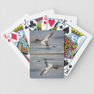 Lesser Scaup Duck taking flight from icy tule lake Bicycle Playing Cards