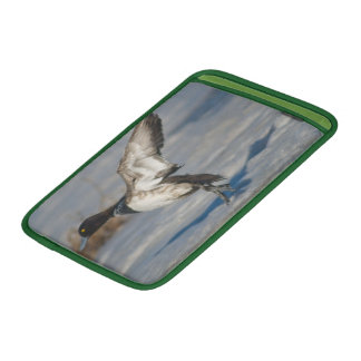 Lesser Scaup Duck taking flight from icy tule lake MacBook Sleeves