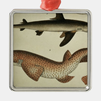 Lesser Spotted Dogfish Metal Ornament