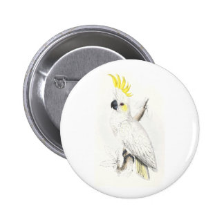 Lesser Sulphur-Crested Cockatoo by Edward Lear Pinback Button